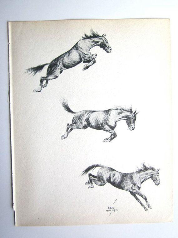 Bronco Bucking Bronco Horse Sketch Vintage Horses by booksygirl