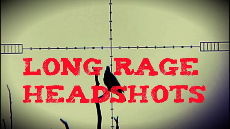 Long range headshots - Daystate Wolverine .22 B