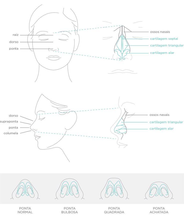 #infográfico - Rinoplastia (plástica de nariz) / Dr. Ricardo Silveira — Cirurgião Plástico – Ribeirão Preto / SP