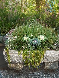Adding stone accents to a space, like this stone planter, contributes to a southwestern feel in a garden.  It's rough edges play nicely off of plant materials and blend well into the southwest garden.