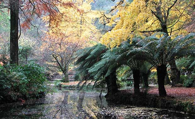Six public gardens to make you fall in love with autumn