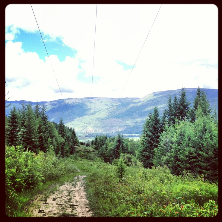 Hiking in Salmon Arm, British Columbia :) ... Follow our adventures at www.facebook.com/brightsideyoga