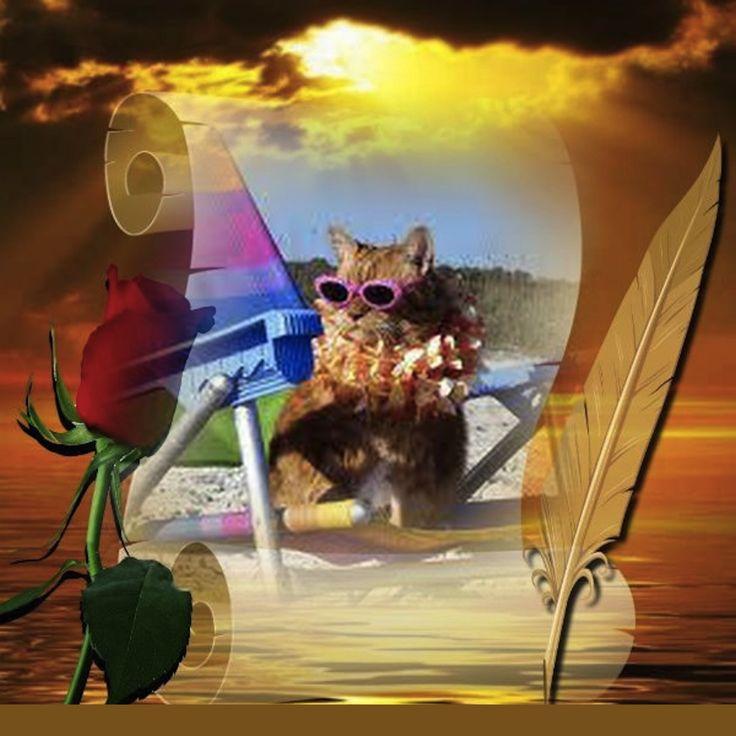 Nouvel article depuis le site littéraire Plume de Poète - Un peu d'énergie calorifique même poétique est bénéfique !  -  ILEF SMAOUI -