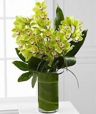 1000 Ideas About Orchid Arrangements On Pinterest
