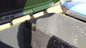 Die Mülltonne stinkt und es gibt dort Maden? Mit diesen handlichen Tricks ist das Problem vorbei! - DIY Bastelideen