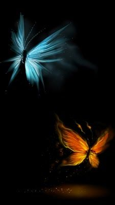 HD Butterfly Wallpapers For Desktops Mobiles Or Tablets
