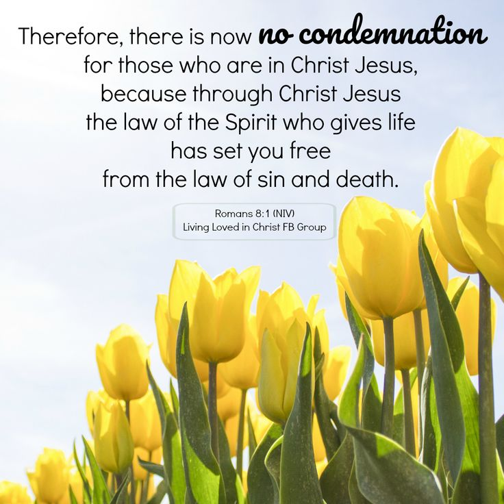There is now no condemnation for those who are in Christ Jesus. Romans 8:1