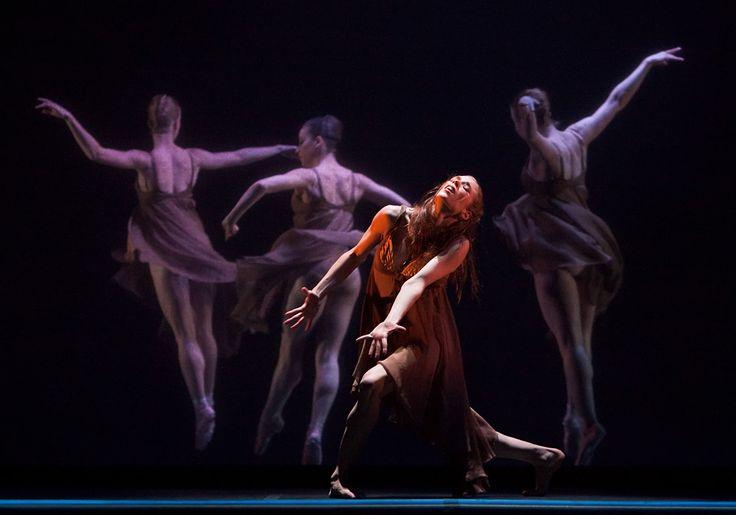Hamlet. Choreography by Stephen Mills. Photography by Tony Spielberg.