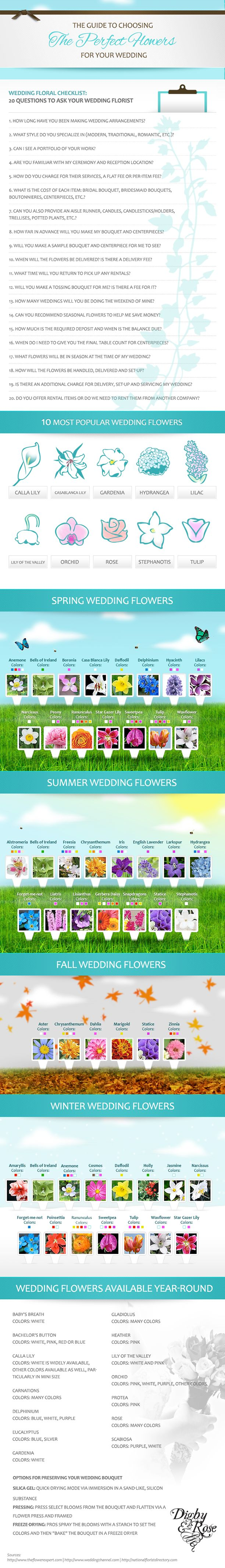64 best infographic images on pinterest info graphics guide to choosing the best wedding flowers junglespirit Choice Image
