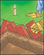 Step 2: Lay rows of bricks in trench 	 Using the mason's lines as guides, lay a row of bricks in the trench. Abut the bricks together tightly to maintain the angle and avoid gaps. Add or remove soil to adjust the height of the bricks. Backfill with soil and tamp gently.