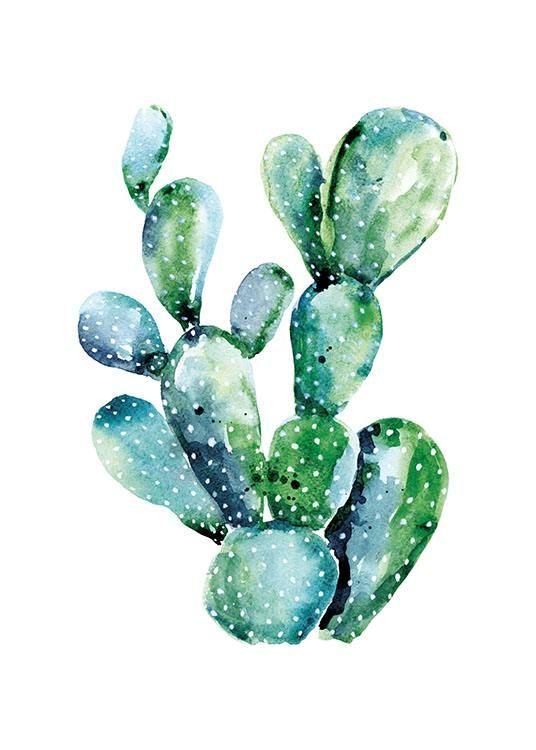 Schönes Poster mit Kaktus….