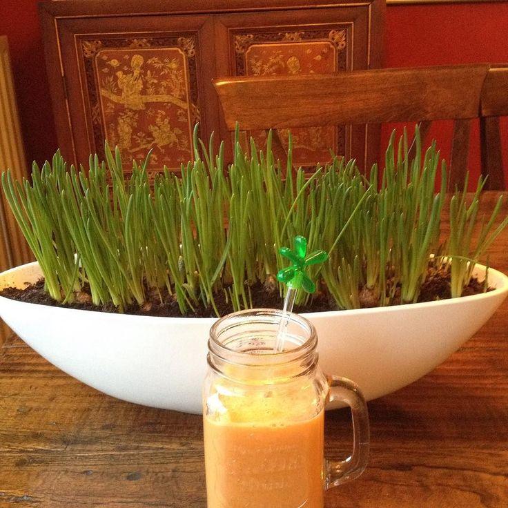 Juice is ready! Badem sutu cennet hurmasi! Tadi nefis!! #juicing #fitjunkie #fitfood #fitfam #healtylife #healthy #healtylifestyle #fitfood #fitjuice #tagsforlikes #tagstagramers #paleo #atkins #vegan #veggy #rawfood #rawjuice #rawvegan #fitfam #vegatables #fruid #fruit #tagstagramers #lowcarb #looseweight #instadiet #instafit #smoothie #juicedetox by visagiesto