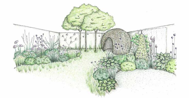 CouCou Design - Small wildlife garden with willow dome ...
