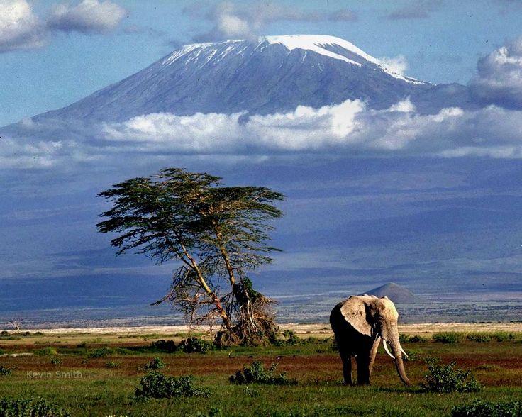Der Kilimandscharo – Der höchste Berg Afrikas