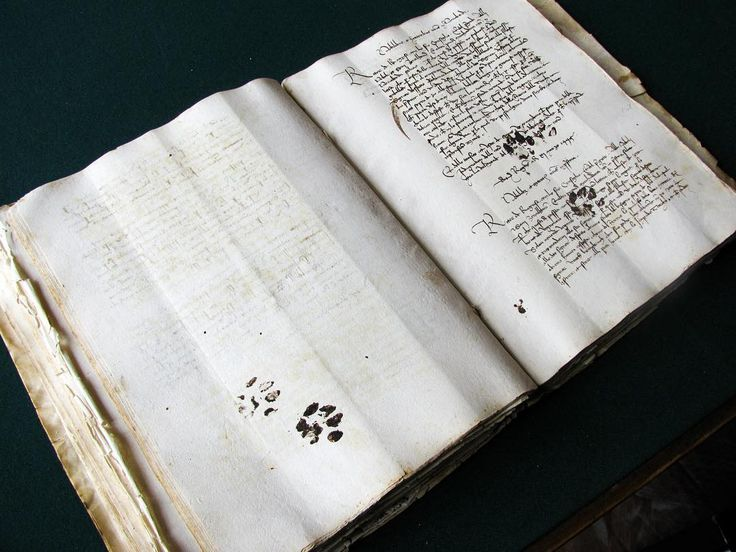 Inky paw prints left by a curious kitty on a 15th century Mediterranean manuscript.  #catsofinstagram #history #photography