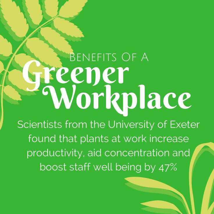 17 Best Images About Benefits Of A Greener Workplace On