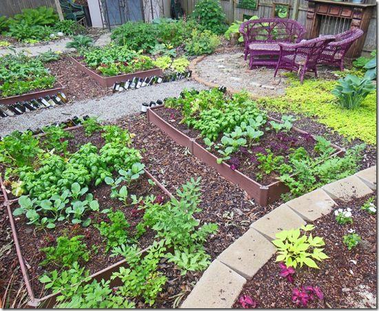 How To Plant A Full Shade Raised Vegetable Garden Bed–Year 2 - Shawna Coronado