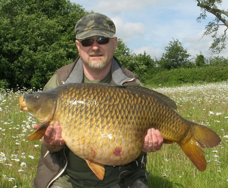 Some of the fishing I have taken this year.  22lb 8oz Common 31 lb 1 oz Common 19 lb 15oz Mirror 33 lb 1 oz Common 34 lb 2 oz Mirror 20lb + Common My Second PB common of the year 34 lb 8 oz A...
