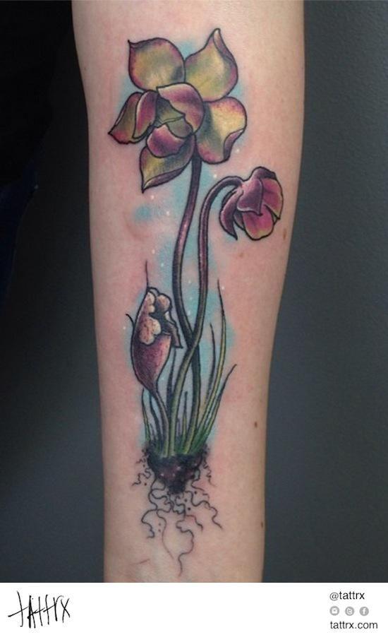 1000 images about tattoos on pinterest crane tattoo mehndi tattoo and hummingbird tattoo. Black Bedroom Furniture Sets. Home Design Ideas