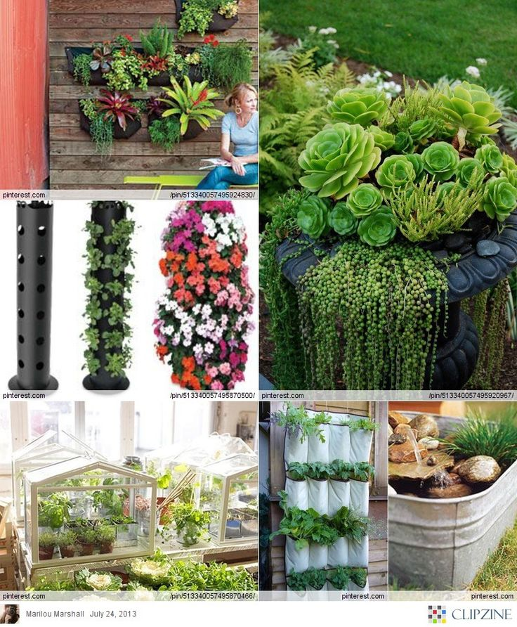 17 best images about small space gardening on pinterest gardens garden ideas and small space - Tips for gardening in small spaces model ...