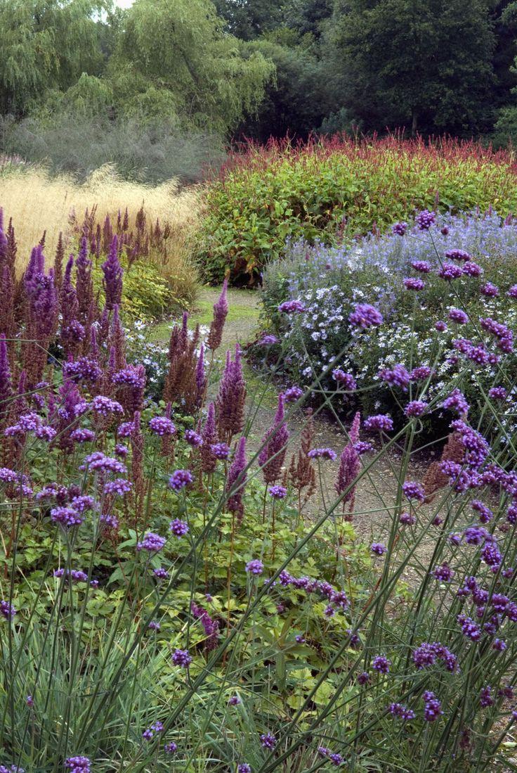 From professionalgardenphotographers | A walk at Pensthorpe, Norfolk, England | { #landscape #beautiful