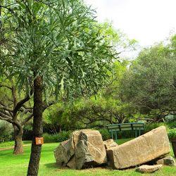 Free State Botanical Garden