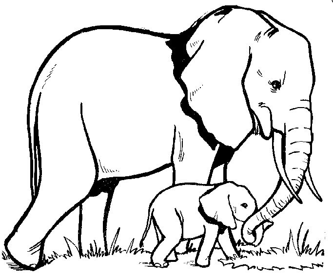 elephant tattoo outline; mom how cool would it be to have our elephants in the shape of being trunk to trunk