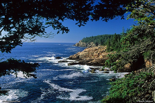 Quotes About Acadia Maine: 13 Best Upper Yough Class 5 Whitewater Rafting Images On