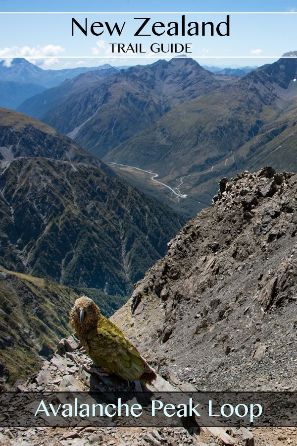 A fully photographed guide to the Avalanche Peak Loop Tramp via Scotts Track. Arthurs Pass South Island New Zealand. #travel #guide #hiking #nz #newzealand #arthurspass #avalanchepeak
