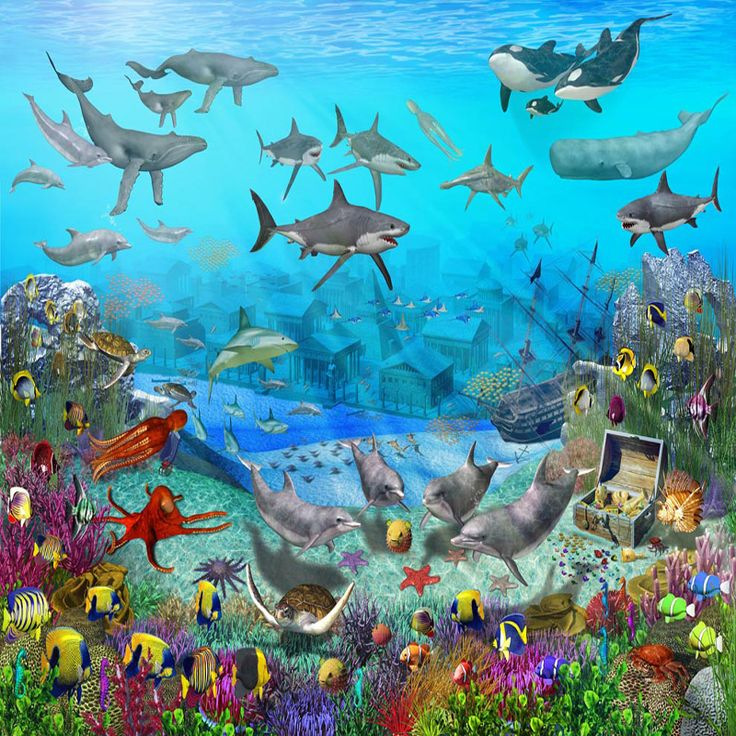 Under the sea wall murals colorful childrens wallpaper for Children mural wallpaper