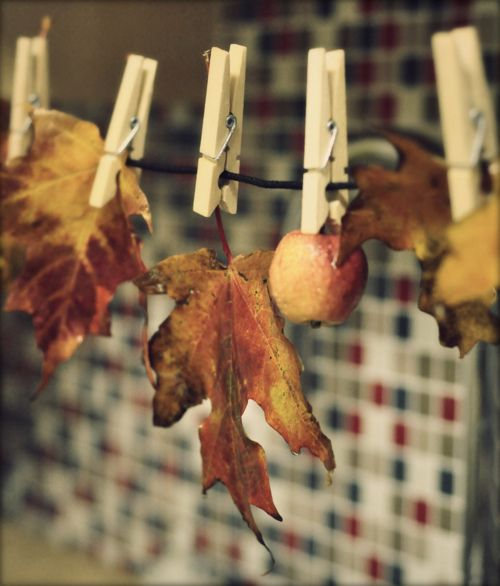 Cute bunting banner with leaves and clothespins. Fall autumn harvest party.