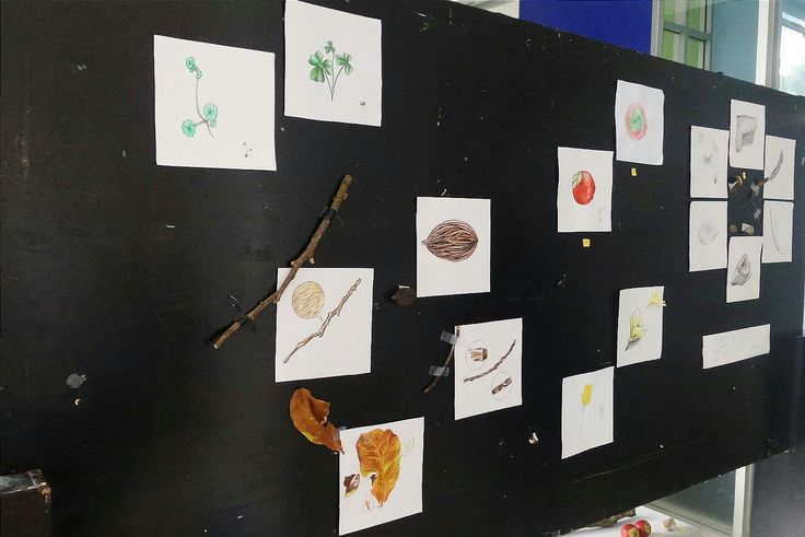 A display board consisting of drawings and paintings of natural objects, arranged by grouping the colors and making somekind of a shape for each color.