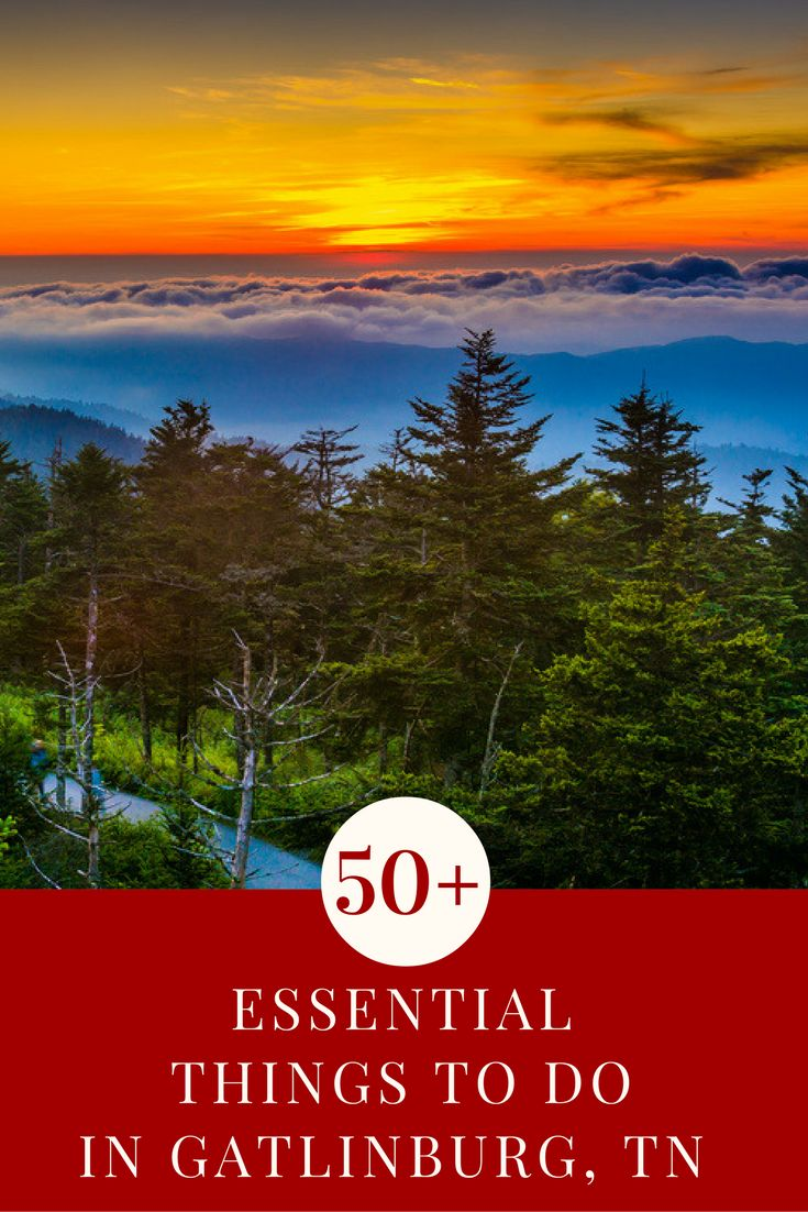 If you're planning a visit to the Great Smoky Mountains, then you must check out this list of things to do in Gatlinburg, TN. These are the top rated Gatlinburg, TN attractions for families and a few things to do near Gatlinburg, too. Check them out and let us know if there are any more that should be added to the list.