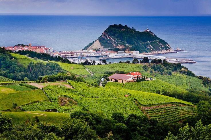 Getaria: campos de txakoli, el Ratón de Getaria, el puerto... (Foto: Mikel Bilbao)