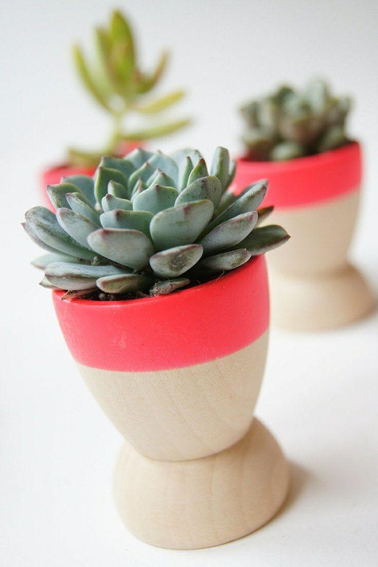 idées déco salon à faire soi-même - des coquetiers en bois en tant que pots à fleurs minuscules