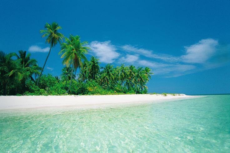 Il modo migliore di iniziare l'anno? Prenotare le vacanze...