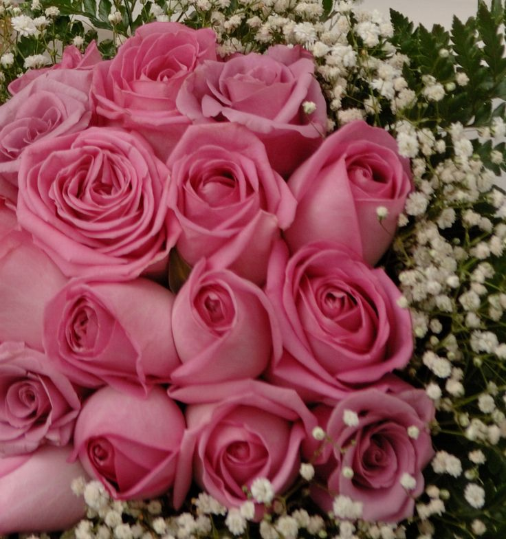 Bouquet Pink Roses Baby Breath Simple but Lovely Decoration