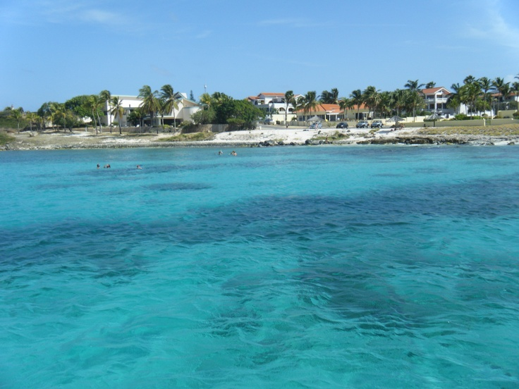Explore The Beauty Of Caribbean: 29 Best Images About Aruba At Its Finest! On Pinterest