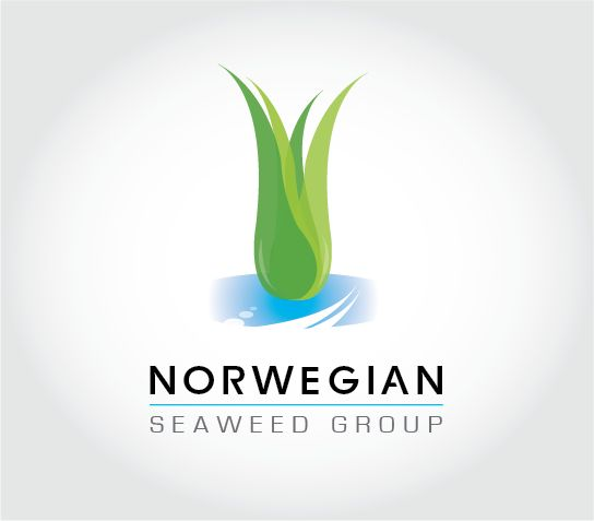 Conceptual logo for Norwegian Seaweed Group #logo #graphicdesign #ocean