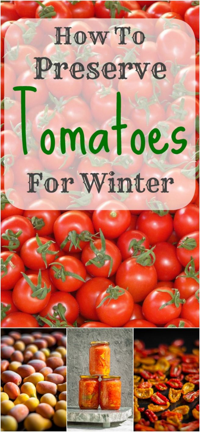 Freezing, canning or drying – these seem to be the three main ways of preserving your tomatoes for those long cold winter months.