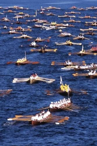 Rowing Competition in Finland