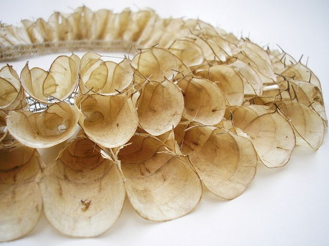 Necklace | Grace de Berker, 2010. 'Honesty' detail.  Seed Pods, Silver thread.
