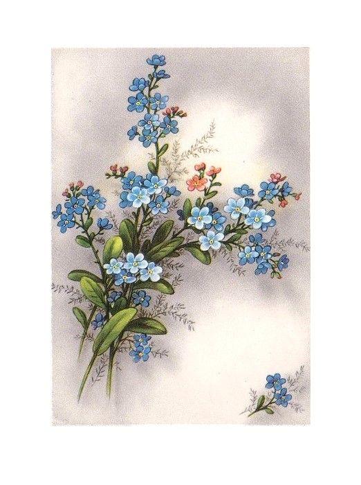 een mooi bosje bloemen.