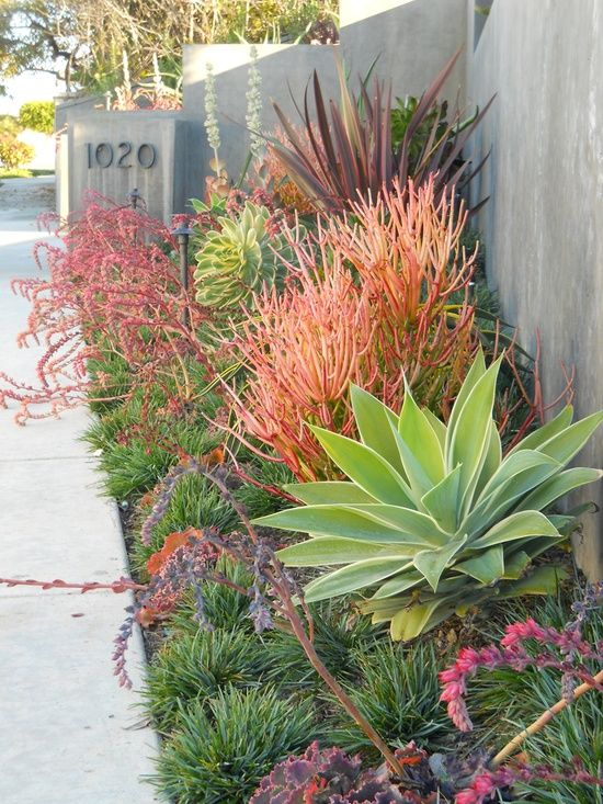 This looks like the sidewalk extends to the curb, but even if it doesn't, these colorful plants make a great statement as well as camouflaging this wall, at least partially.