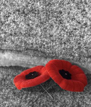 remembrance day canada flanders fields