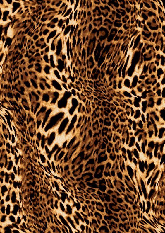 leopard pattern 2 print - photo #39