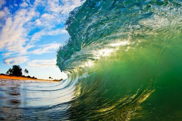 beautiful face of hawai wave