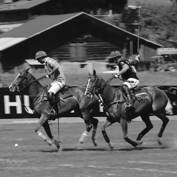 Polo Match by photo-cyp