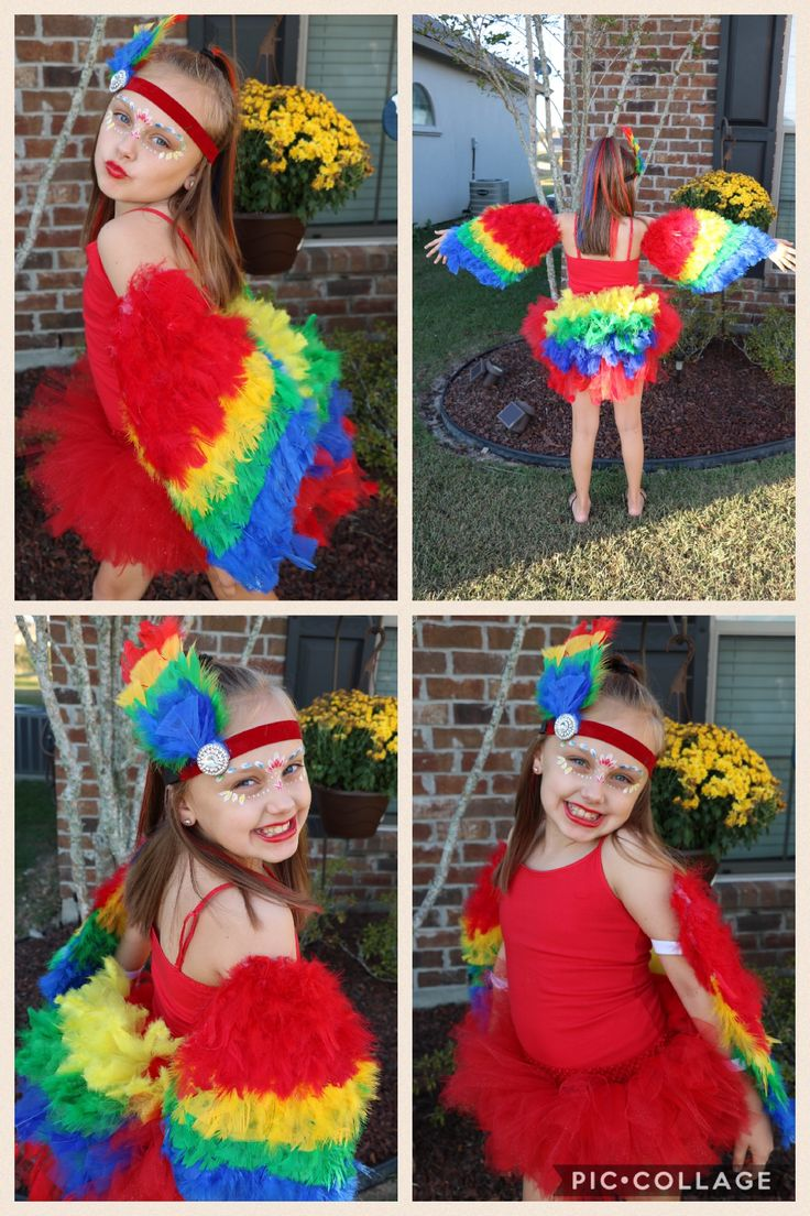 Macaw/Parrot Costume, DIY Parrot Costume, Tutu costume, Halloween Costume for tween, feathers