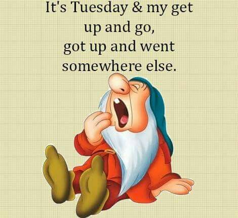 It's Tuesday:)